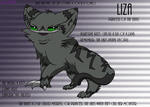 (OLD)Liza reference sheet 2013 by StriviaX7