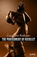 LI ThePunishmentOfNicollet coverin by scottcarpenter