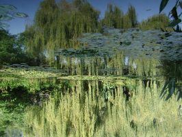 Giverny - mirror of water by Atelierdereve