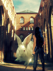 The Rabbit of Caerbannog by to-the-brink