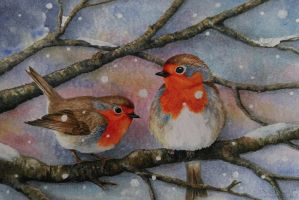 Winter Robins by Ivencar