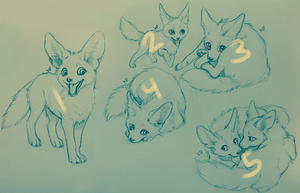 Fennec sketches! (ended) by kitfaced