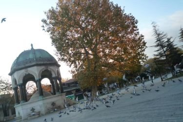 Istanbul by Juinny