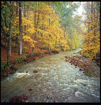 Fast creek. Oct2016,img.4.209-284, with story by harrietsfriend
