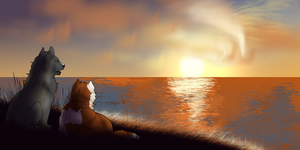 Watching the Sunset by skypoot