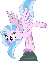 Graceful Silverstream by ShutterflyEQD