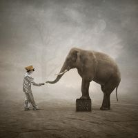 Play with me by Alshain4