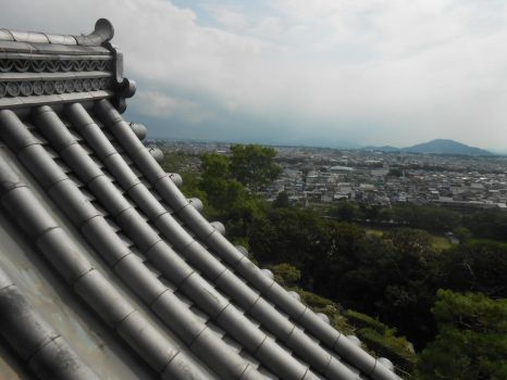 View from the Rooftops in Japan by Figgy5119