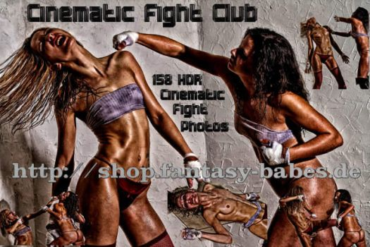 Cinematic Fight Cover by FantasyBabes