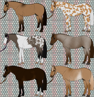 Horse Designs - ALL SOLD by painted-cowgirl