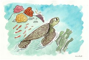 Sea turtle by elbooga
