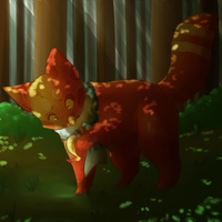 Through the Woods by MasaBear