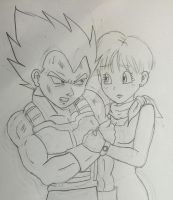 Dragon Ball Super V/B moment Sketch by Dbzbabe