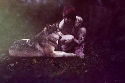 Howl. by YouAndMe-x