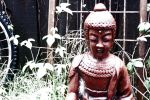 Backyard Buddha by scripturemonkey