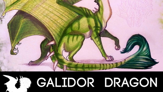 HOW TO DRAW YOUR DRAGON TUTORIAL! Poses by Galidor-Dragon