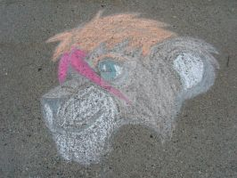 Regulus in Chalk by Quachir