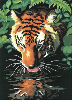 A Tiger by ShonnaKay