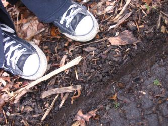 Shoes in the Woods by whenwewasfab