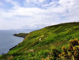 Ireland - The Green Island by Risii