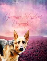 GSD premade by BerlinlavsMarie