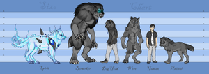 Silver and Bone Size Chart by TeknicolorTiger