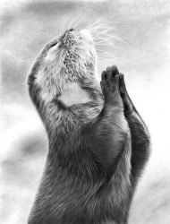 Mr Otter Praying by Sophie-Lawson