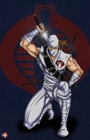 Storm Shadow_Art Jam Entry by WiL-Woods