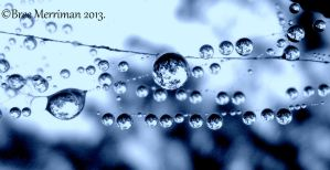 Water Drops by BreeSpawn
