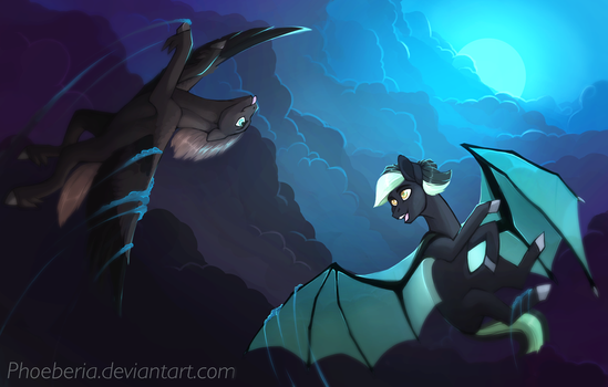Commission: Night flight by Phoeberia