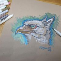 Gryphon Head by Dreamspirit
