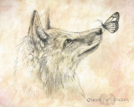 Gift - Butterfly Fox by queenofeagles