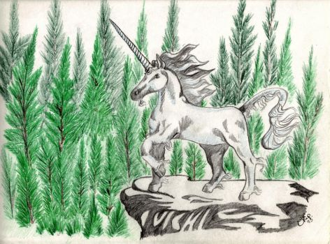 Unicorn at forest by BENNYCUB