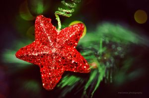 Christmas ornament by mariannaphotography