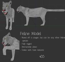 Feline model for sale **Reduced price** by Kattingtonn