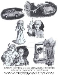 Harry Potter: Book 2 Chapter 3 Vignette Drawings by TheGeekCanPaint