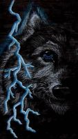 Thunder Wolf by Wolf-Lovers