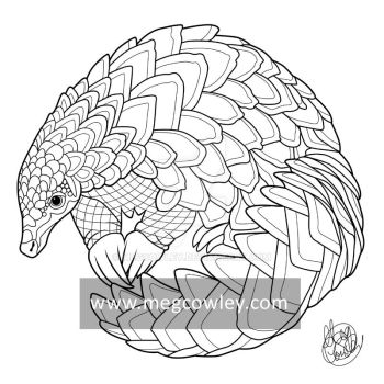 Pangolin (The Exotic Colouring Book) by megcowley