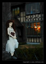 Shakespeare's Birthplace by dollseye