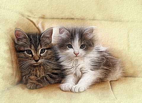 Two Kittens by PeterPawn