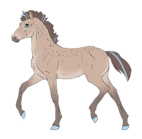 N3650 Padro Foal Design by casinuba