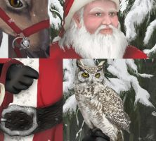 Santa in the Forest - details by LeeAnneKortus