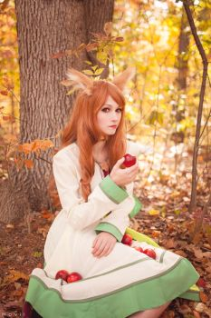 More apples please! - Spice and Wolf (1) by kazeplay