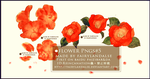red flowers png by Fairylandalse