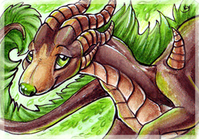 ACEO_Agaave by Kyuush