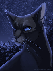 Crowfeather by Prince-Petrichor