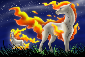 The Ponyta Family
