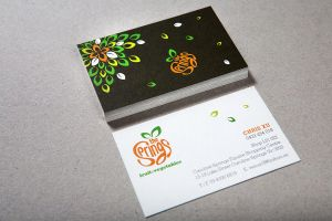 The Springs Fruit and Vegetable Logo by pixsign