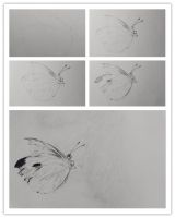 The process of my drawing by FWEI13