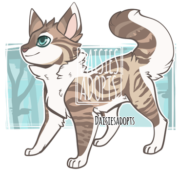 Cat adoptable | Auction | CLOSED by DaisiesAdopts